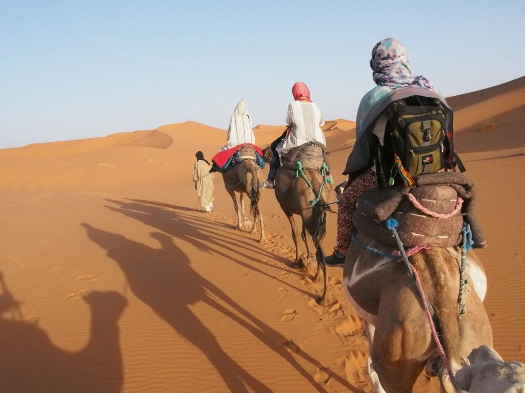 サハラ砂漠のツアー