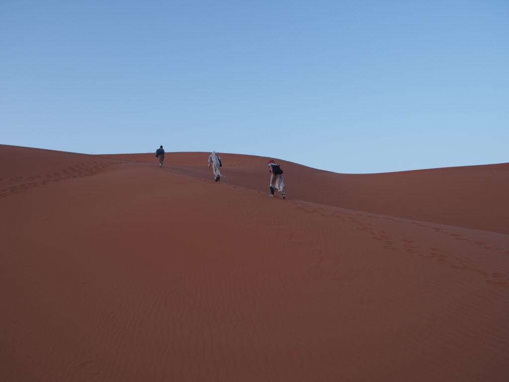 サハラ砂漠でラクダのいる場所へ向かう