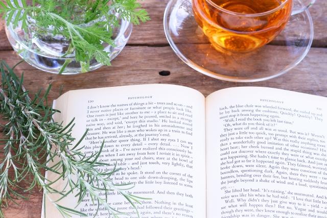 英語の辞書と紅茶 (英語を使ってお金を稼ぐ方法イメージ画像)